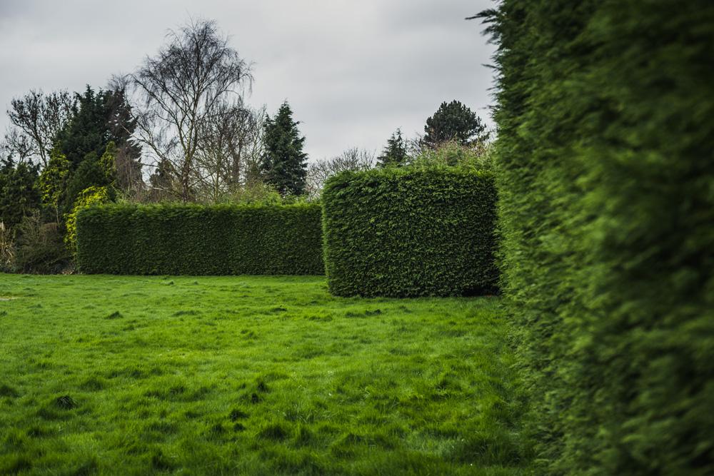 Large Conifer Trim Barrow on Trent Derby © Gardenscape, Derby 06