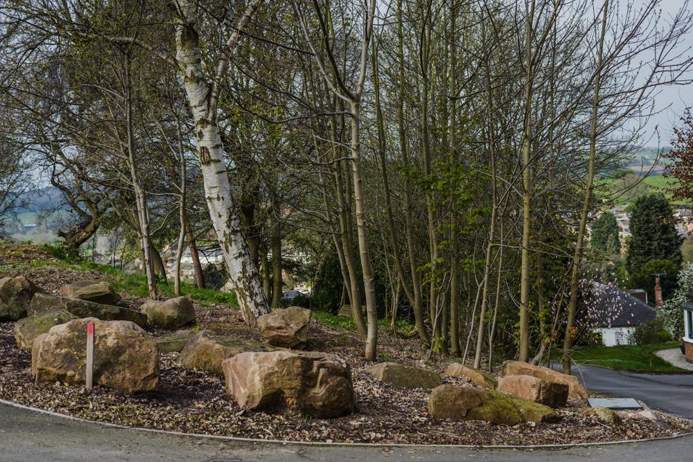 Woodland Clean Up Little Eaton © Gardenscape 01