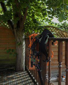 Lime Tree Removal Littleover © Gardenscape 03